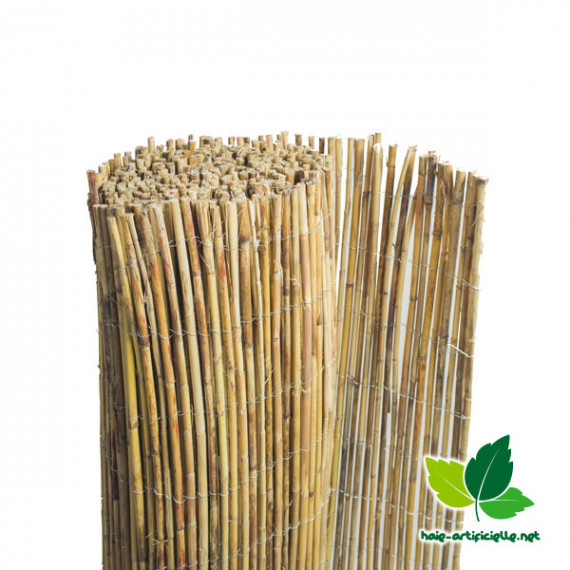 Canisse en bambou naturel entier France Green - brise vue - haie - Canisse Bambou pas cher