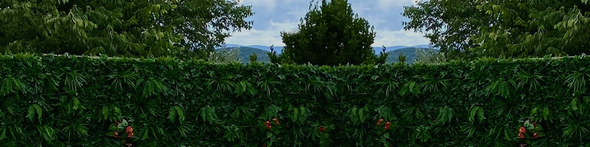Vente de feuillages artificiels, murs végétaux et treillis extensibles
