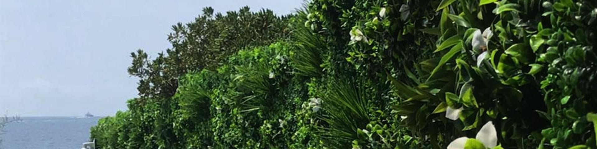 Mur Végétal Artificiel - France Green - Ambiance design et réaliste